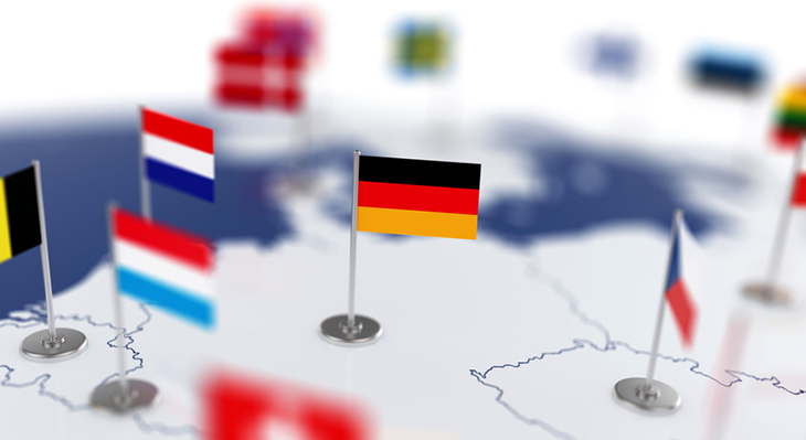 Germany within ReferNet