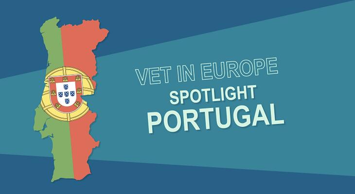 VET system in Portugal